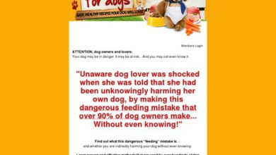 Photo of CookBook For Dogs