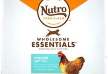 Photo of Nutro Wholesome Essentials Indoor and Sensitive Digestion Dry Cat Food, Chicken