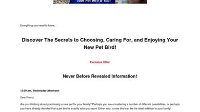 Photo of Discover The Secrets to Choosing, Caring For, and Enjoying Your New Pet Bird! – Pet Bird eBook